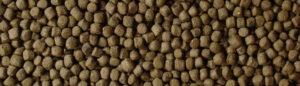 Fiskefoder til koi karper 2