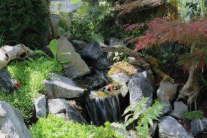 rislende vand i haven